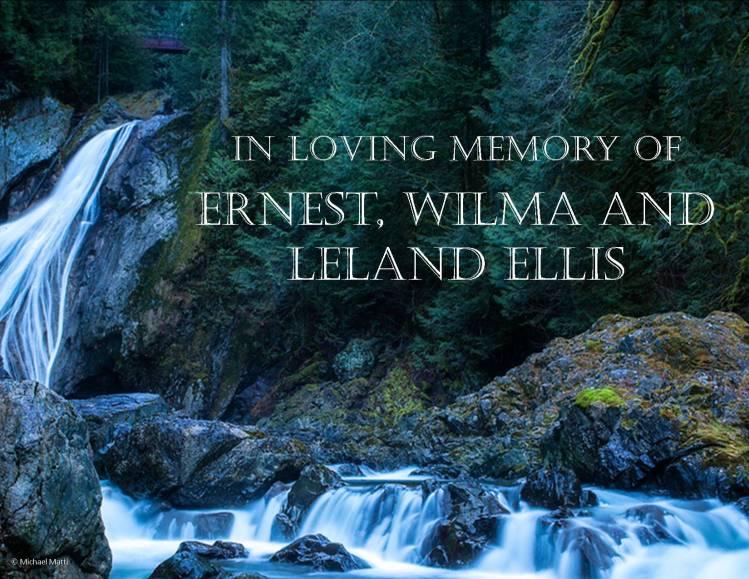 Ellis memorial v2